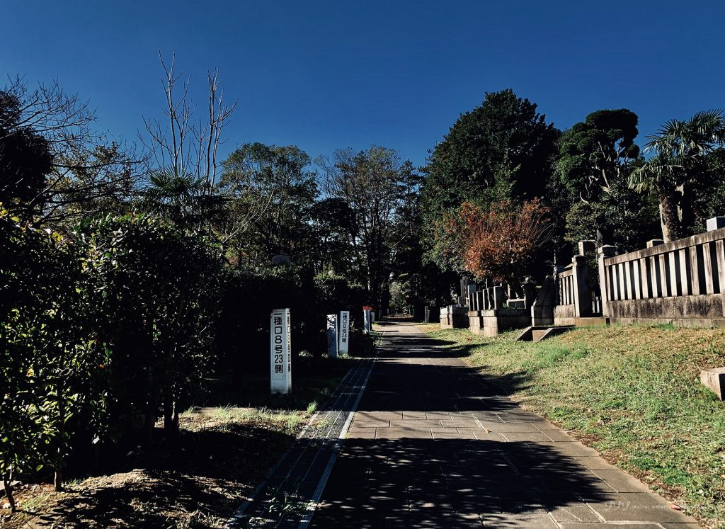 【シリーズ・心霊スポット】青山霊園