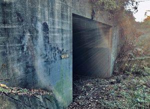 【シリーズ・心霊スポット】八王子1トンネル