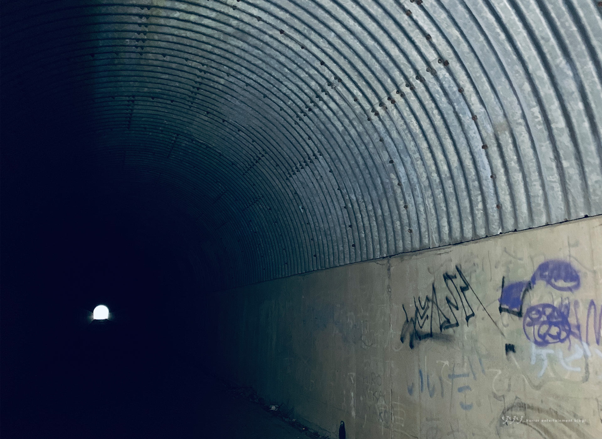 【シリーズ・心霊スポット】山神トンネル