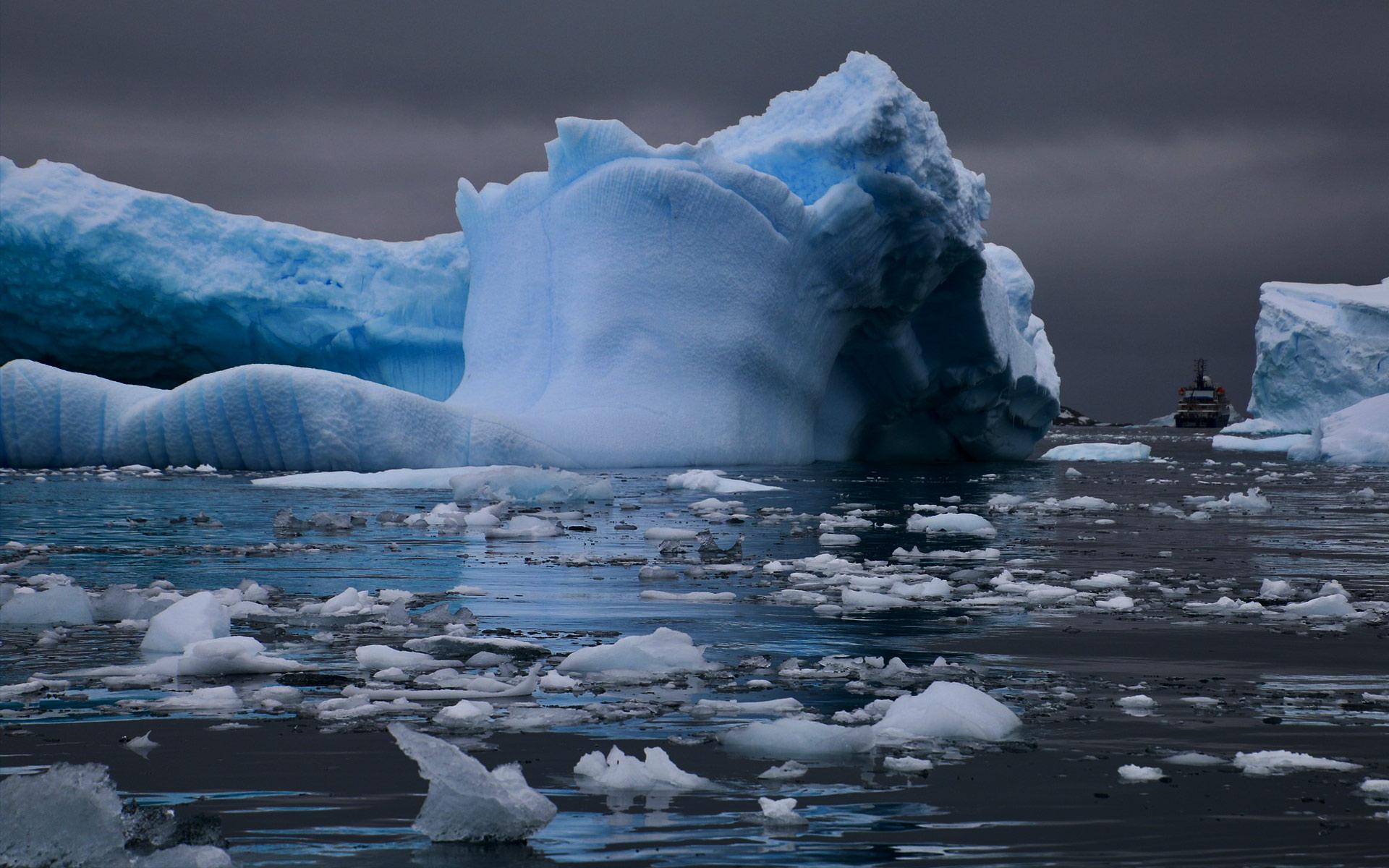 【シリーズ・都市伝説】全長数十メートル「南極のニンゲン」