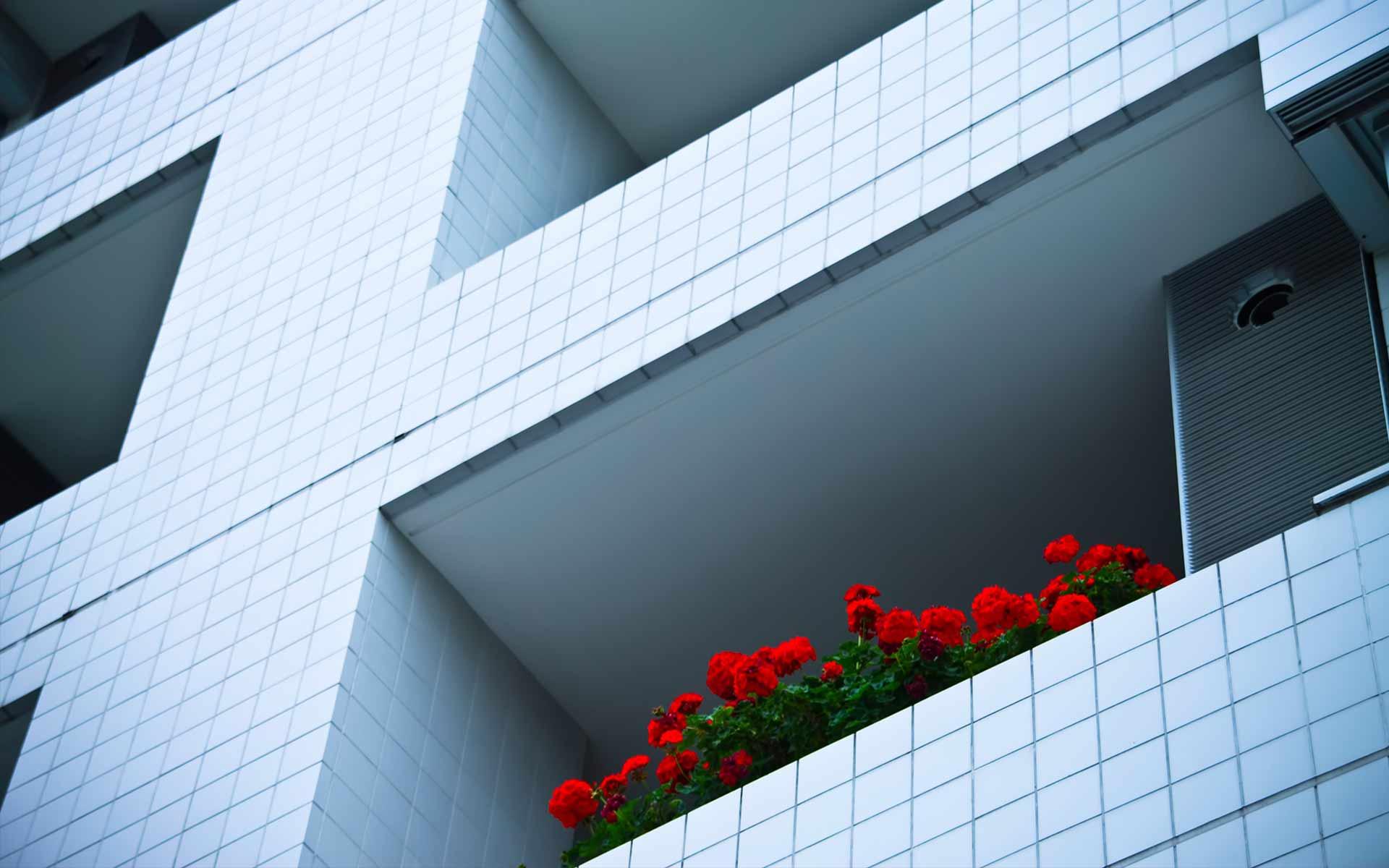 【シリーズ・都市伝説】それは一目惚れ「マンションの一室の窓から見つめる女性」