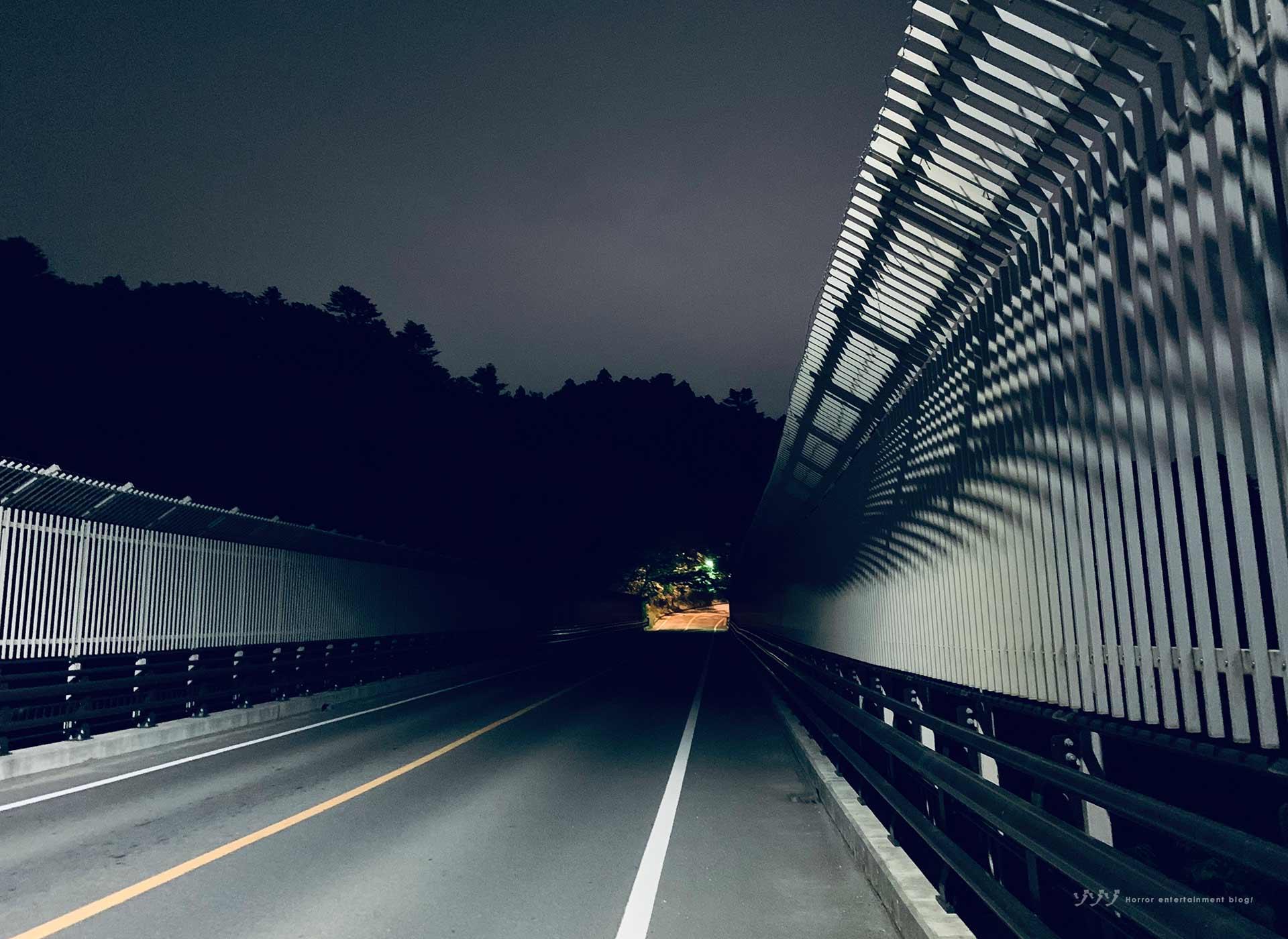 【シリーズ・心霊スポット】八木山橋